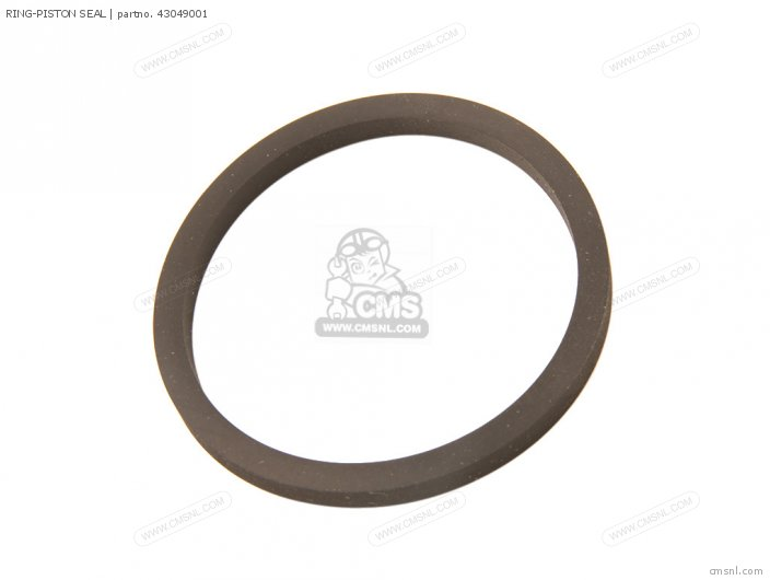 Ring-piston Seal photo