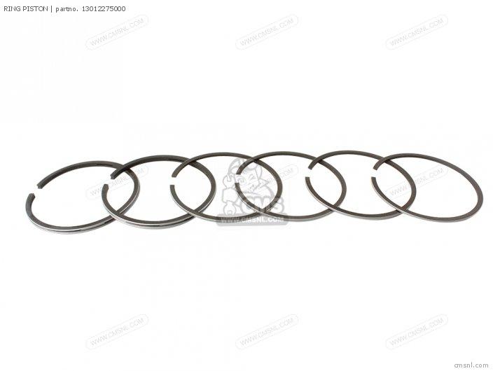 Ring Piston photo