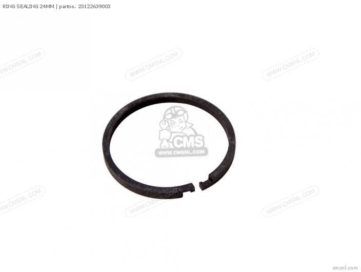 RING SEALING 24MM