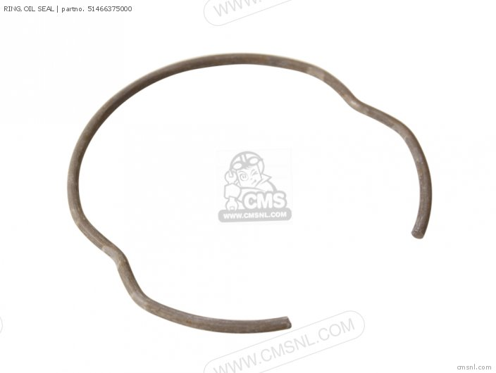 Ring, Oil Seal photo