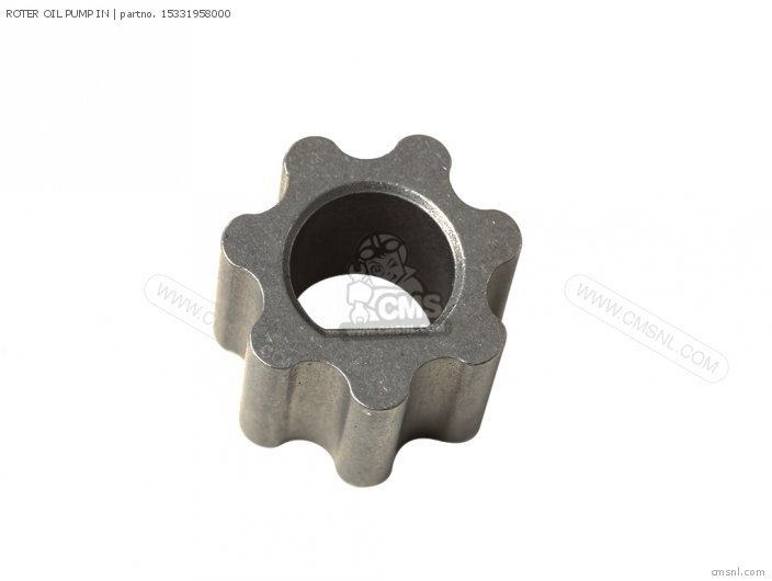 ROTER OIL PUMP IN
