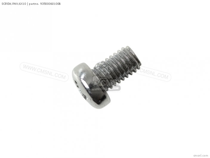 SCREW,PAN,6X10