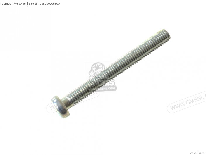 SCREW PAN 6X55