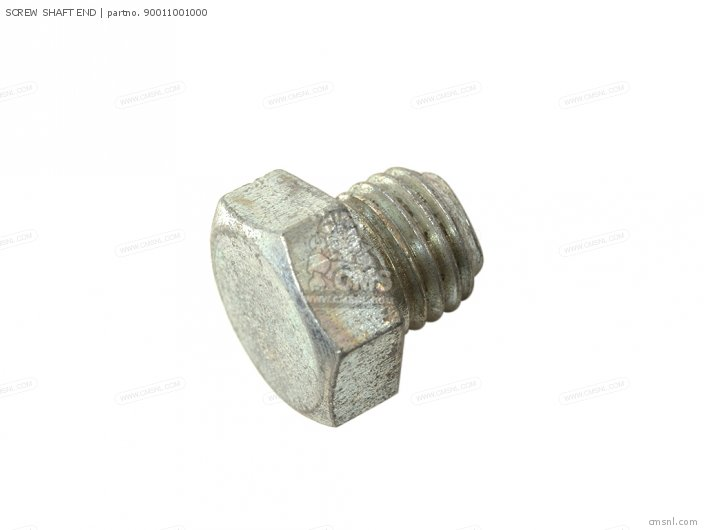 SCREW SHAFT END
