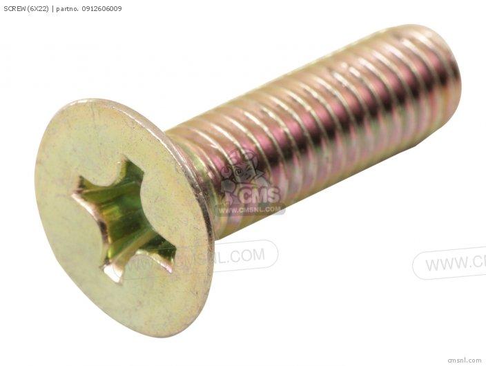 Screw(6x22) photo