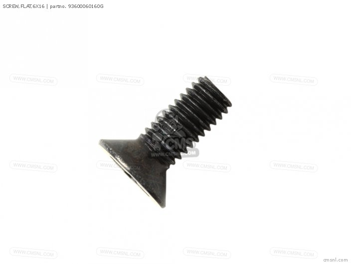 Screw, Flat, 6x16 photo
