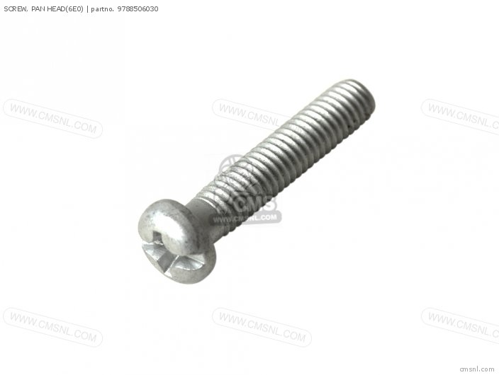 Screw, Pan Head(6e0) photo