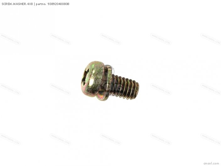 SCREW.WASHER.4X8