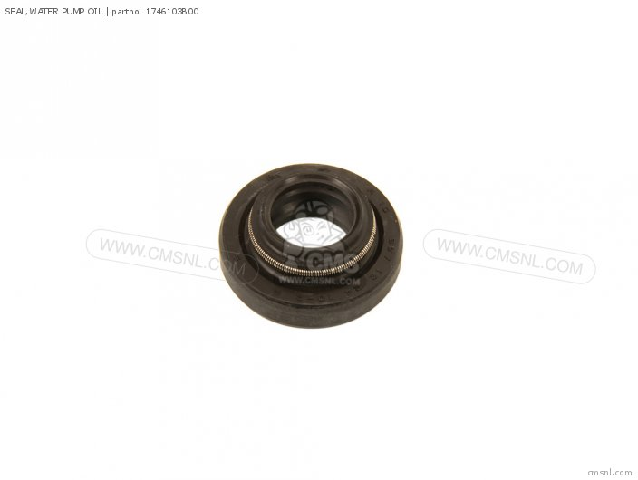 Seal, Water Pump Oil photo