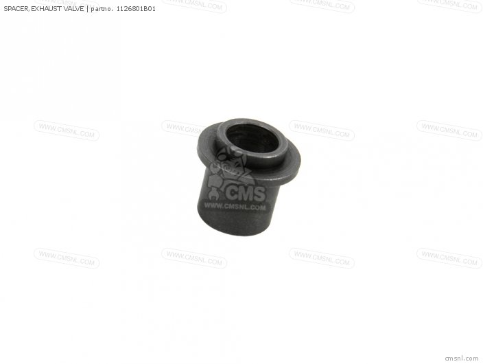 Spacer, Exhaust Valve photo