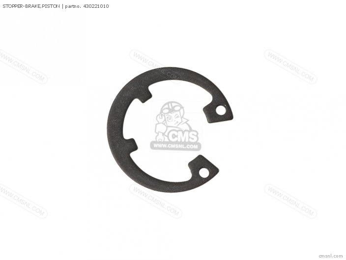 Stopper-brake, Piston photo