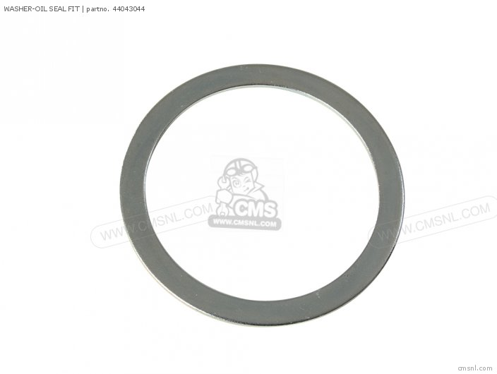WASHER-OIL SEAL FIT