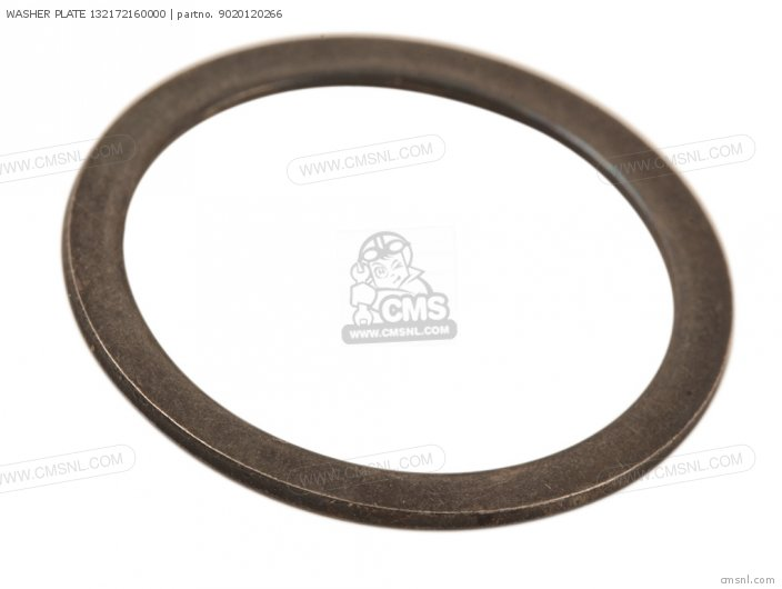 Washer Plate 132172160000 photo