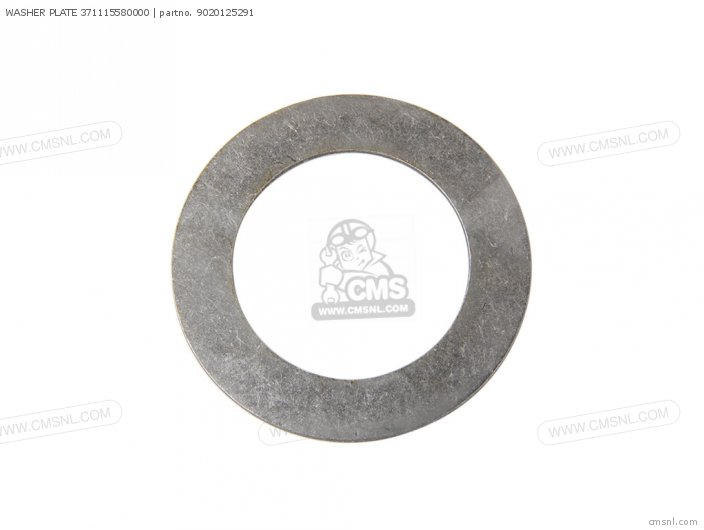 Washer Plate 371115580000 photo