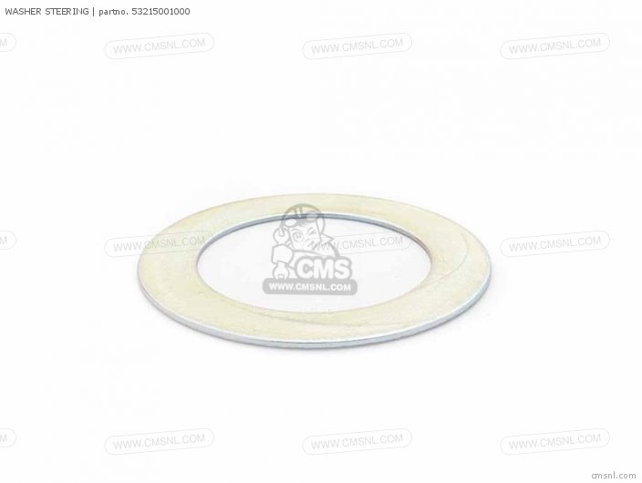 WASHER  DUSTSEAL