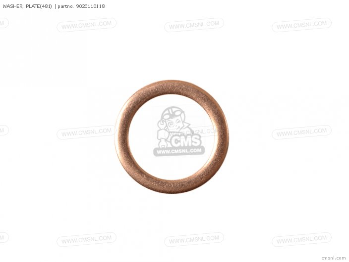 WASHER  PLATE481