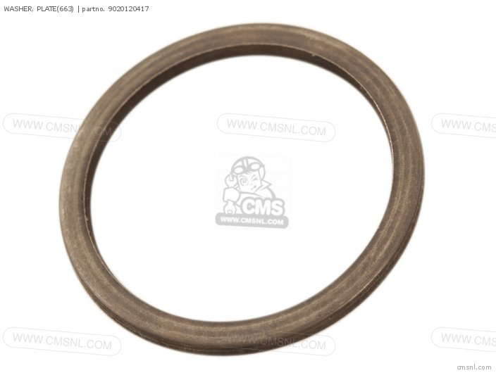 WASHER  PLATE663